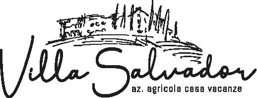 Logo Villa Salvador con payoff